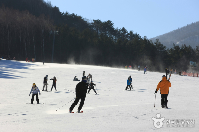Специальная туристическая зона Тэгваллён в Пхёнчхане (대관령 관광특구)