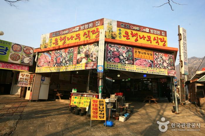 용문산 은행나무식당