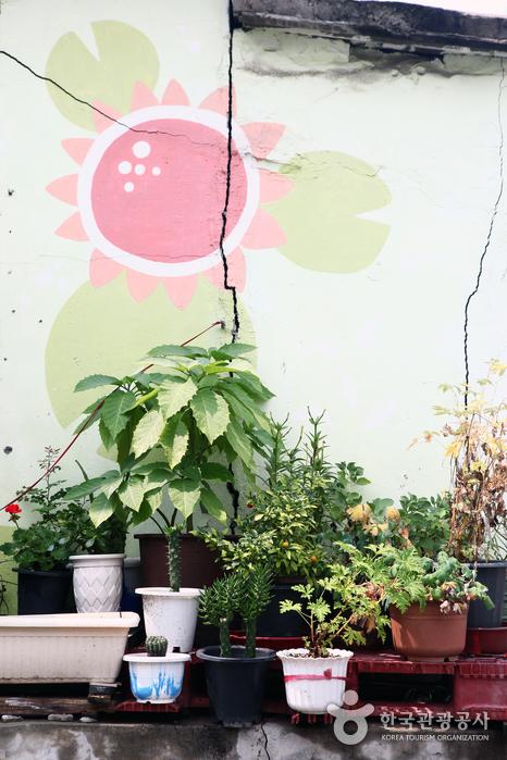 꽃 그림과 꽃이 하나로 어우러진 동네 벽화