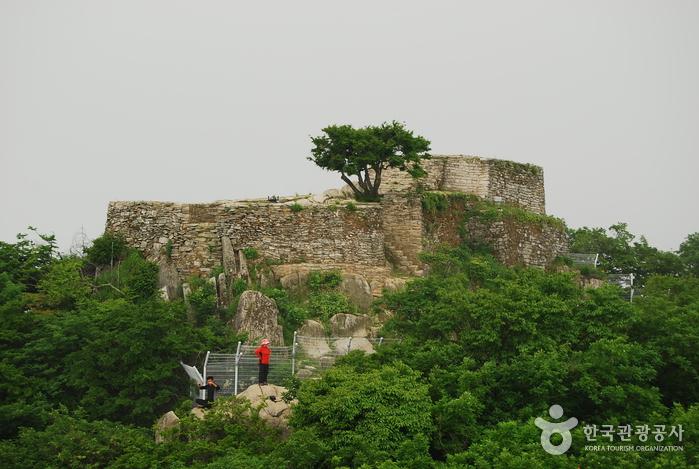 Chamseongdan Altar (강화 참성단)