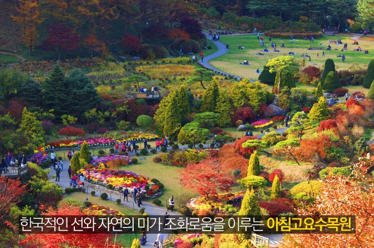 한국적인 선와 자연의 미가 조화로움을 이루는 아침고요수목원