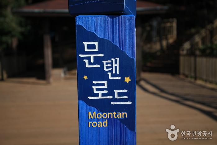 月光路(Moontan Road)(문탠로드)