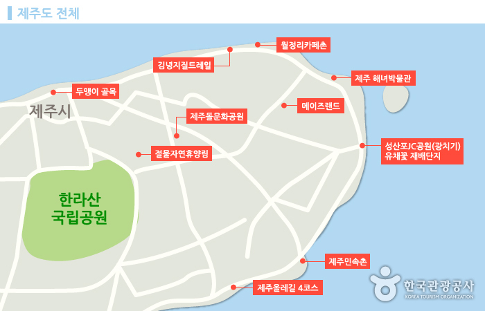 제주시를 중심으로 주요 관광지를 점으로 표현한 제주 지도