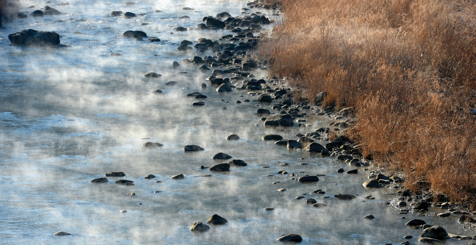 얼어붙은 강