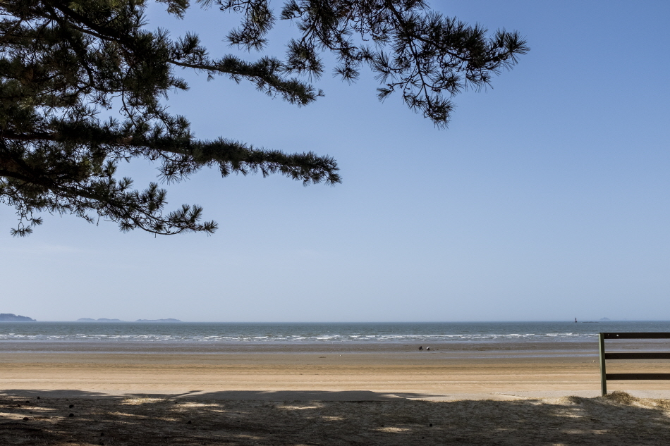 드넓은 백사장이 펼쳐진 몽산포해변