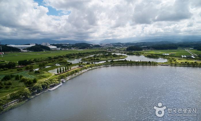 鏡浦湖(候鳥遷徙地)(경포호 철새도래지)