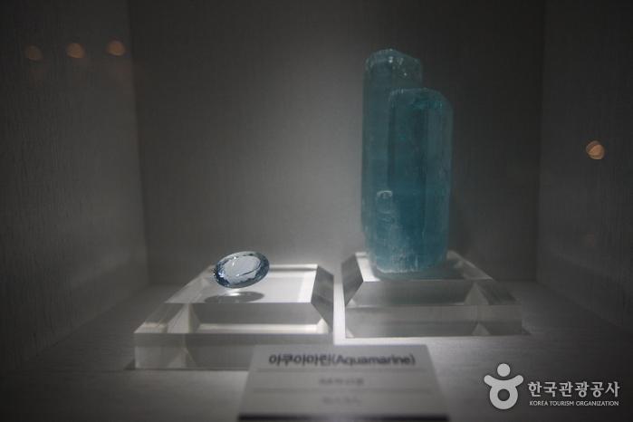 Музей естествознания Мокпо (목포자연사박물관)13
