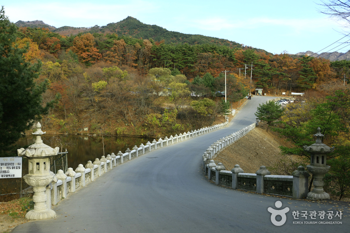 Palgongsan Natural Park - Donghwasa Temple District (팔공산자연공원 동화사지구)