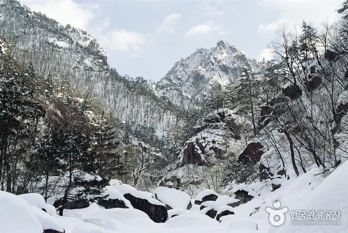 Gipfel Daecheongbong (설악 대청봉)