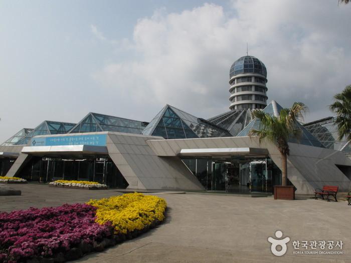 Туристический комплекс Чунмун (중문관광단지)