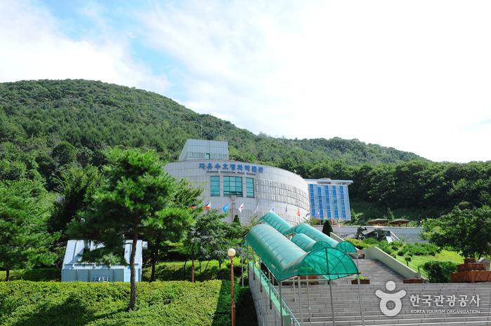 Особая туристическая зона Тондучхон (동두천 관광특구)6