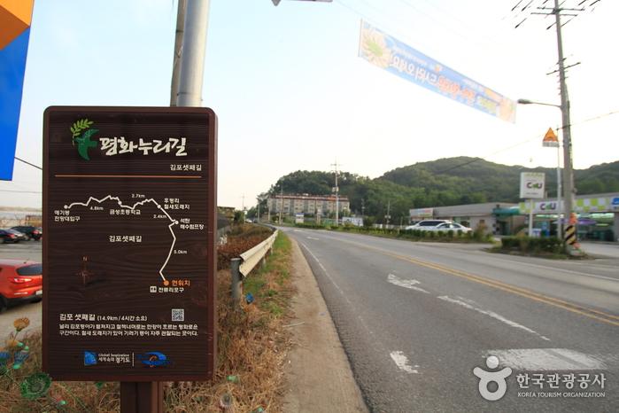 [평화누리길 3코스] 한강철책길