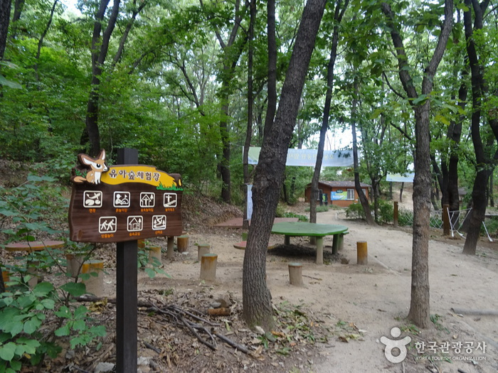 Odong Neighborhood Park (오동근린공원)