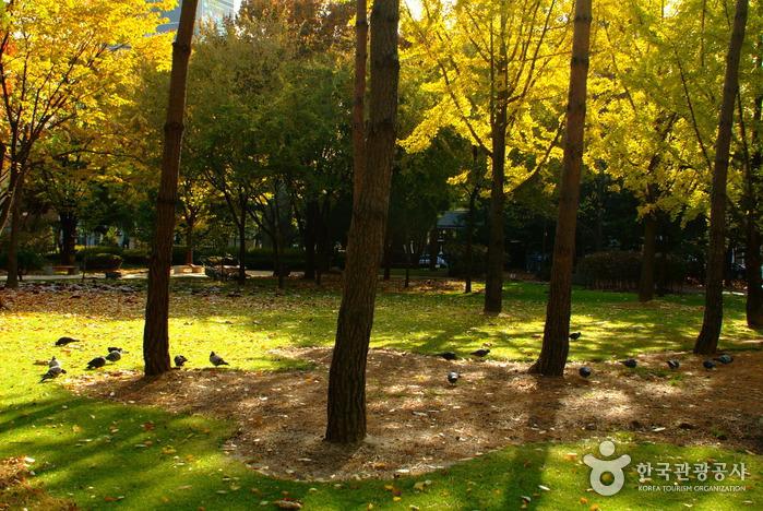 Парк Тосан (도산공원)10