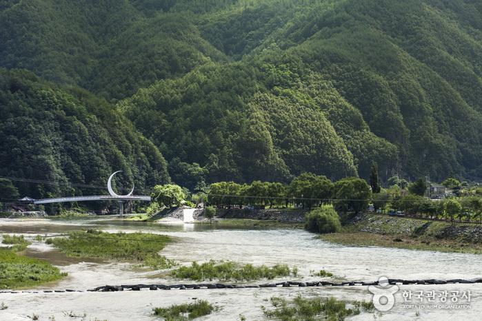 강으로 내려앉은 듯한 초승달 모양의 교량