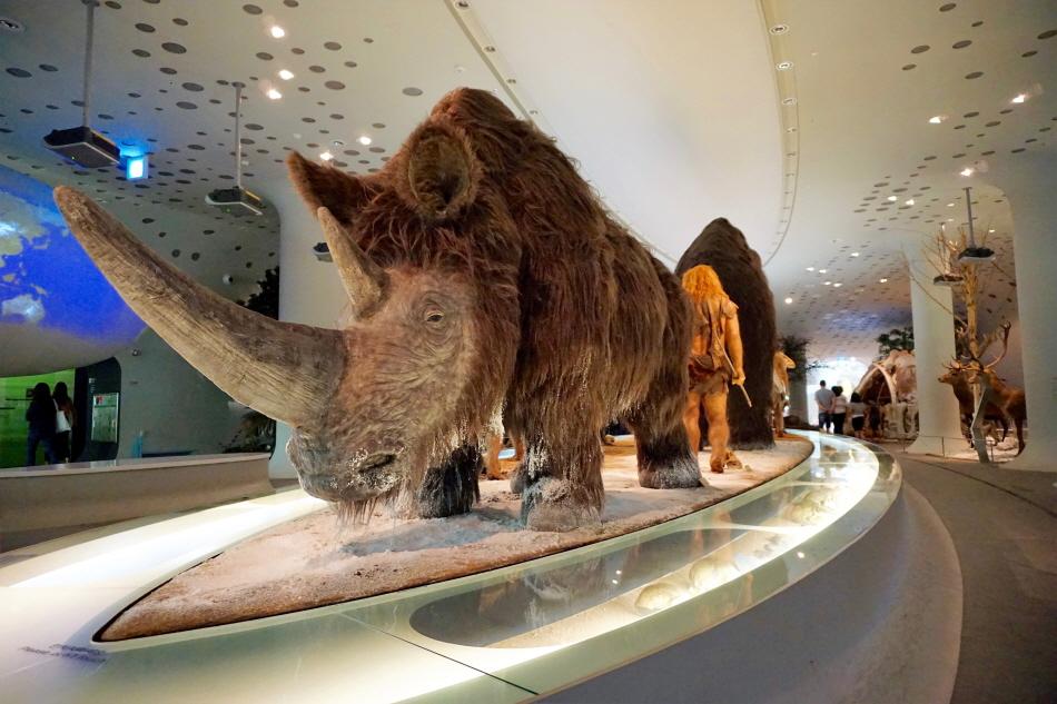 전곡선사박물관 전시실 중앙의 구석기시대 디오라마