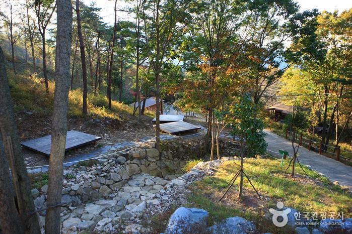 国立天冠山自然休養林(국립 천관산자연휴양림)