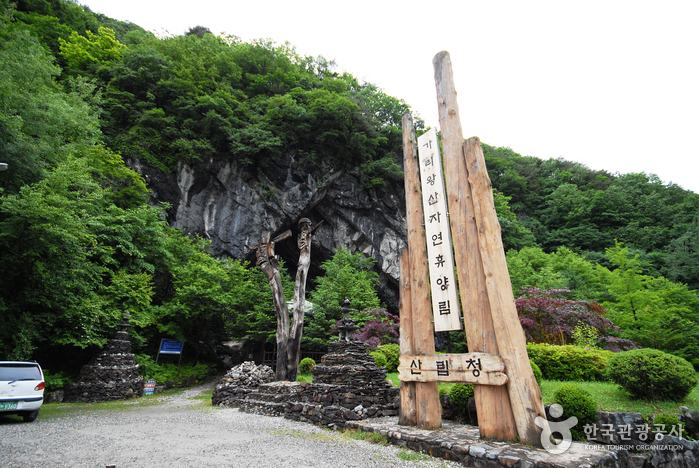 Gariwangsan National Recreational Forest (국립 가리왕산 자연휴양림)