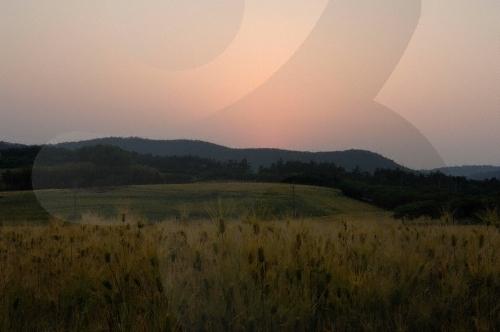 김제 지평선 추억의 보리밭 축제