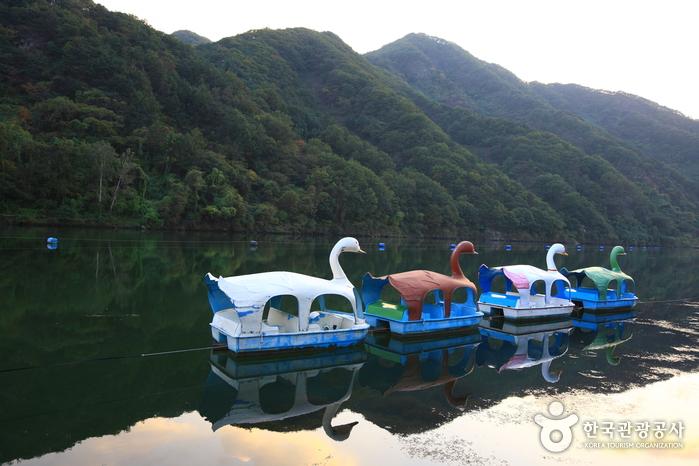 錦江遊園地(금강유원지)
