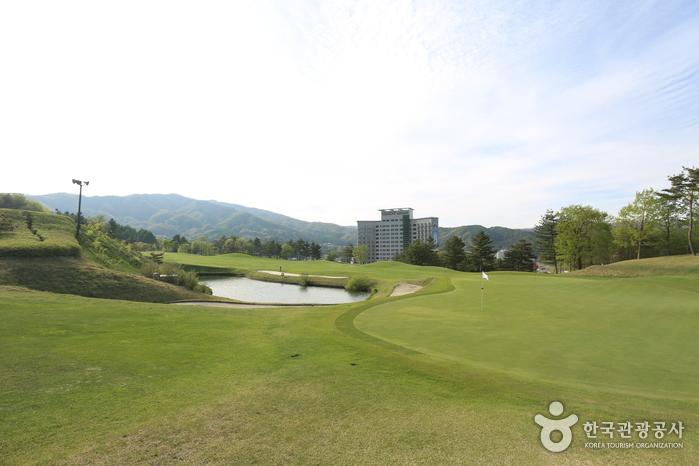 평창_휘닉스파크 골프클럽