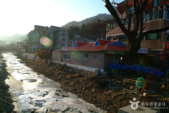 Gangchon Resort (강촌유...