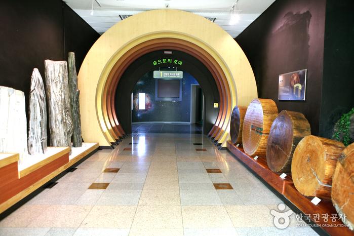 경상북도 산림과학박물관