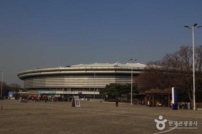 Спортивный стадион в Олимпийском парке (올림픽공원 경기장)4