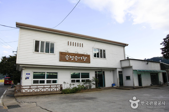 송정송어장