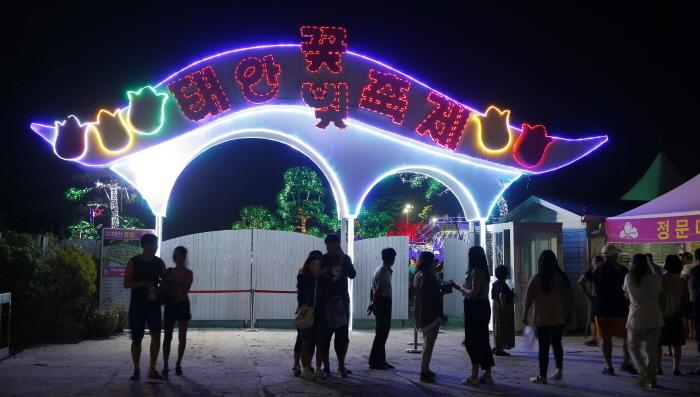 태안 빛축제 2016 사진