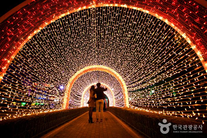 이월드 별빛축제 사진5