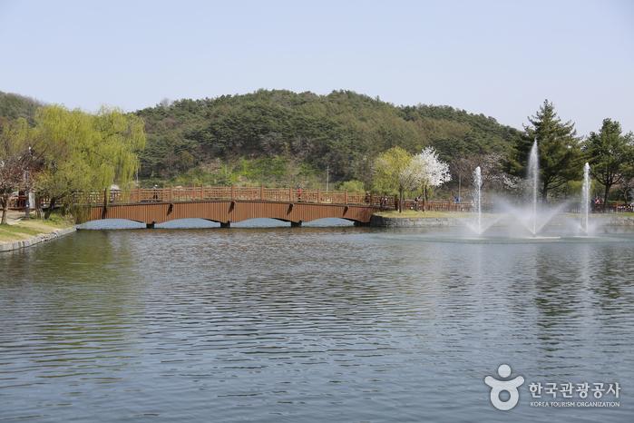 2016 올해의 관광도시를 가다, 오감치유 힐링 도시 제천