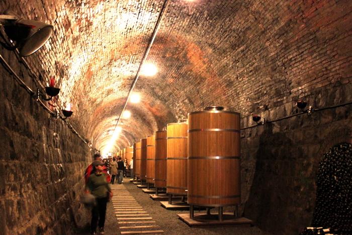 Винный туннель Чхондо (청도 와인터널)4