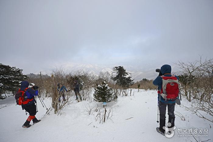 유일사 쉼터를 지나 나무계단 구간을 지나면 넓은 설원이 펼쳐진다.