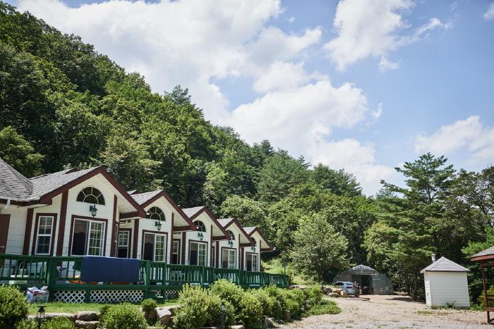 수림대마을 [녹색체험관광마을]