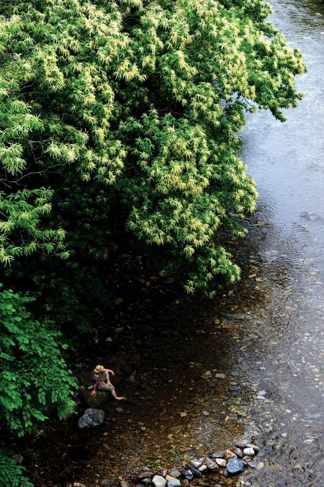 큰 나무가 있고 물이 발목까지 오는 계곡. 그 나무아래 계곡물에 발을 담그며 쉬고있는 한사람