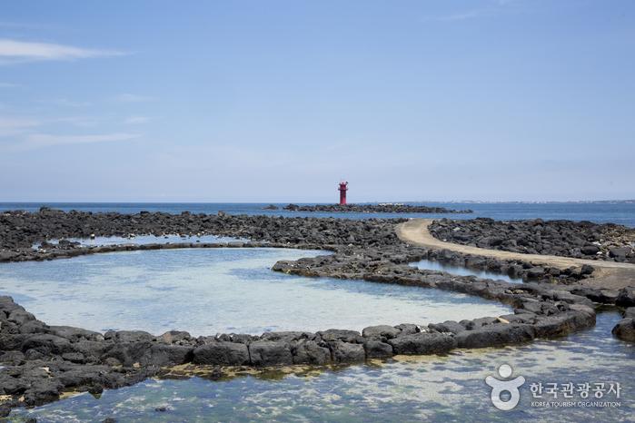 해녀체험 후에는 바다에서 스노클링을 즐길 수 있다.