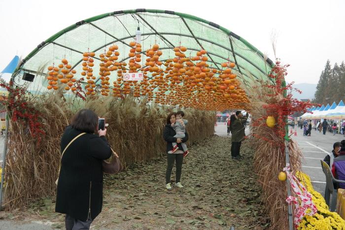 Gimhae Jinyeong Sweet Persimmon Festival (김해 진영단감축제)