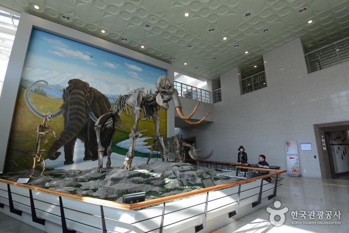 로비의 매머드와 코뿔소 화석