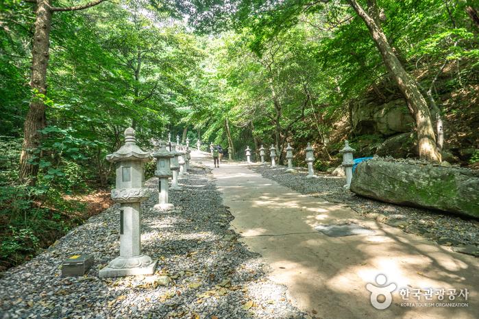 Gyeongsan Seonbonsa Temple (선본사(경산))