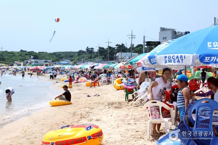 오징어맨손잡기체험 및 구룡포 해변축제 2018