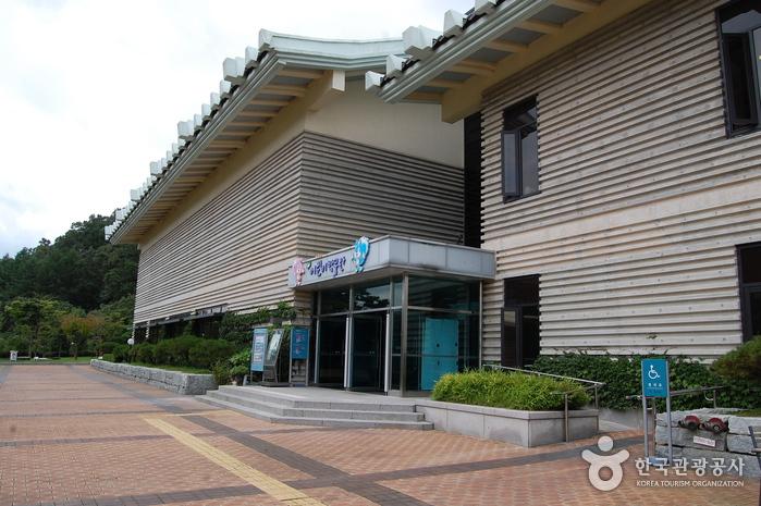Cheongju National Museum (국립청주박물관)