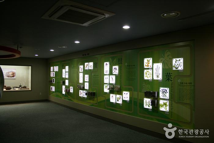 大邱藥令市韓醫藥博物館(대구 약령시 한의약박물관)14