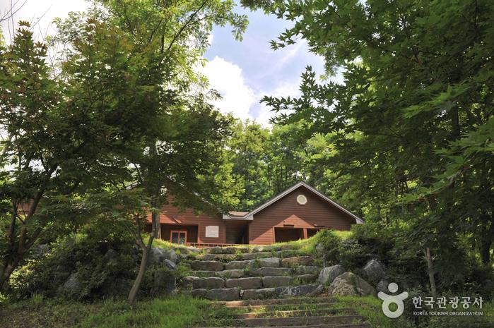 Natur-Erholungswald Yongmunsan (용문산자연휴양림)