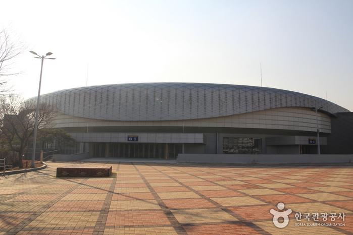 Спортивный стадион в Олимпийском парке (올림픽공원 경기장)3
