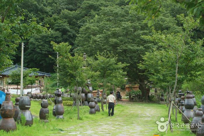 용천사 꽃무릇공원