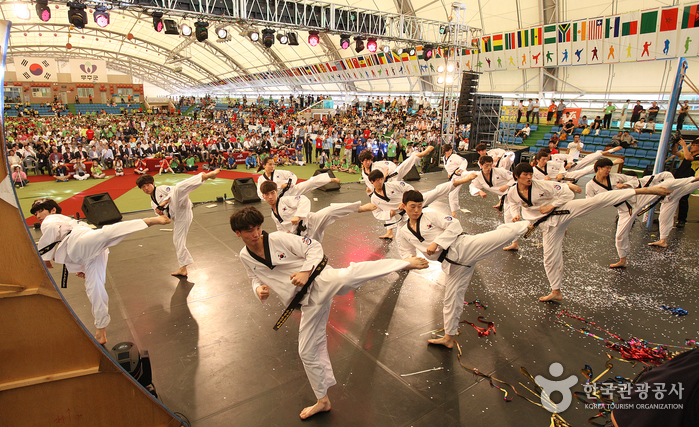 Internationale Taekwondo-Kulturexpo (세계태권도문화엑스포)