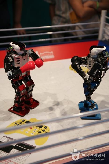 로봇 권투