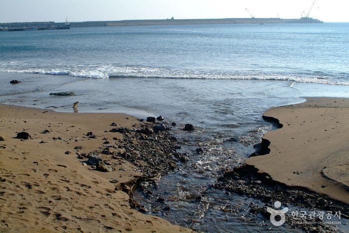 Пляж Хвасун Кымморэ (화순 금모래 해변)8