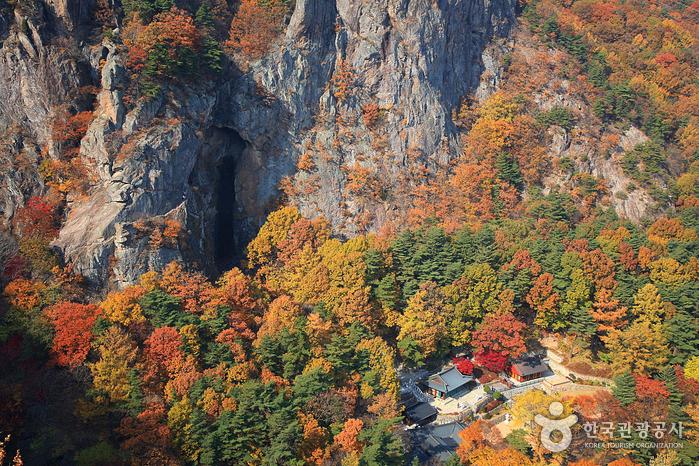 황금빛 까마귀의 정기를 받은 산, 금오산도립공원 가을 단풍 100배 즐기기 사진